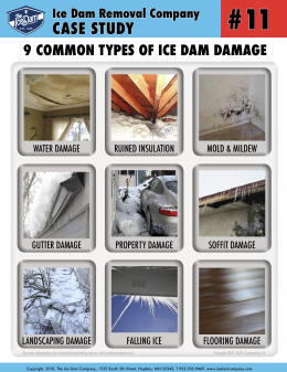 9 Common Types of Ice Dam Damage